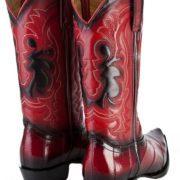 cowboy-boot-eel-3