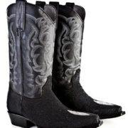 cowboy-boot-stingray