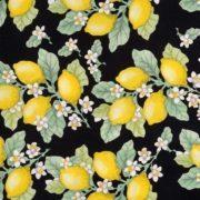 leandra-50s-dress-42205-6