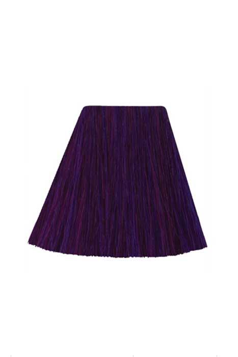 Amplified Deep Purple Dream