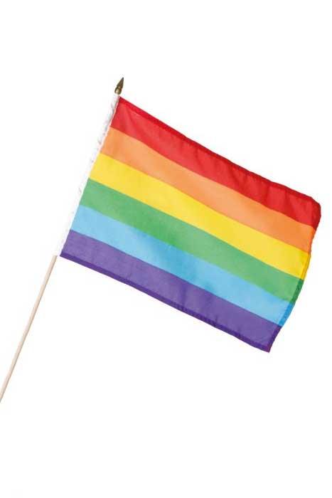 Pride Flag 30x40cm