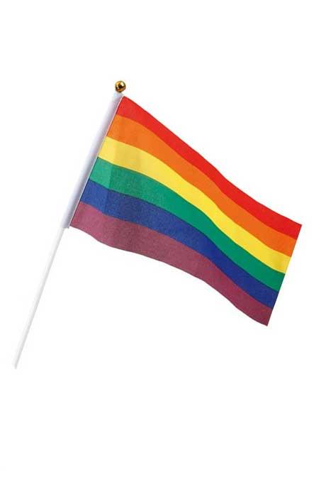 Pride Hand Flag 14x21cm