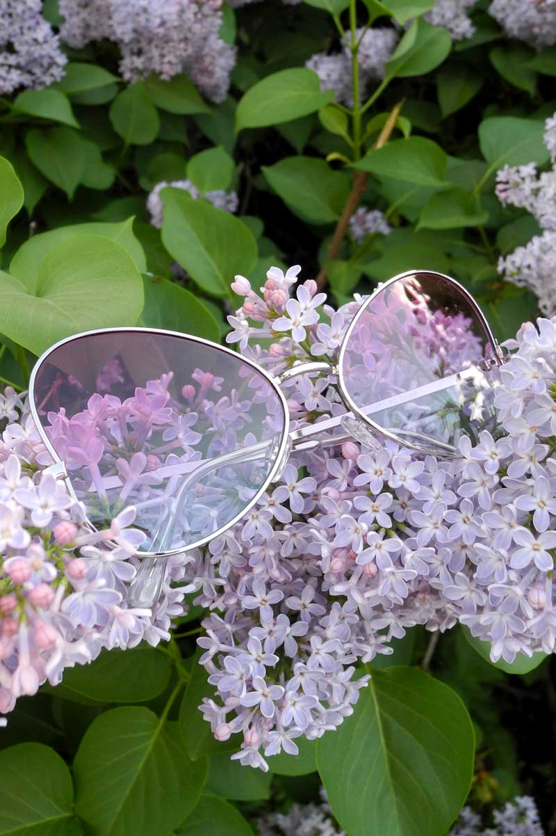 Butterfly Aviators Pink Blue