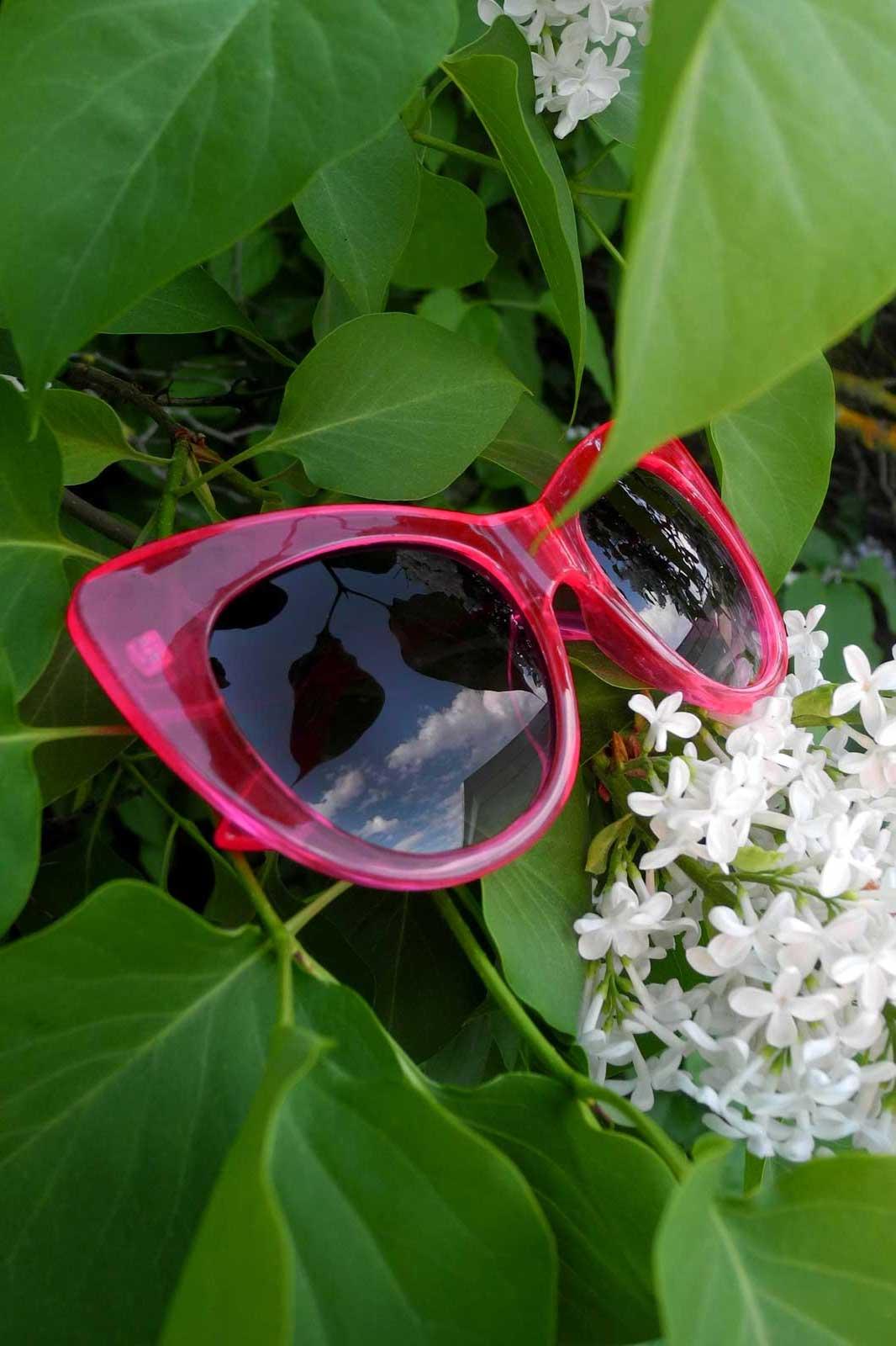Cat Eye Sunglasses Clear Fuschia