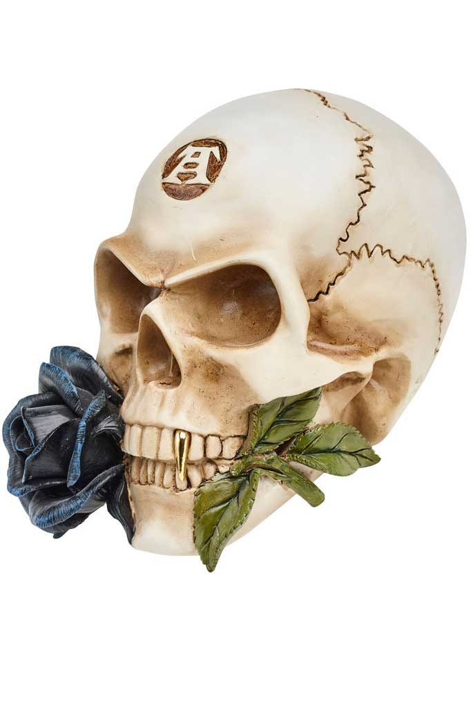 Alchemist Skull With Rose
