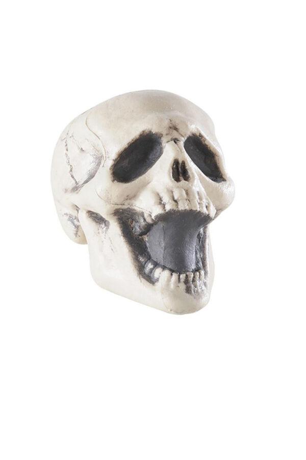 Skull Scream